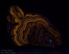 Fluorescent Schalenblende Zincblende Sphalerite Galena Marcasite End piece 9.7cm