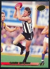 Collingwood Magpies