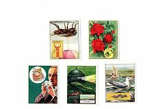 How, What and Why? J. Bibby & Sons LTD (Trex) cards 11 to 15