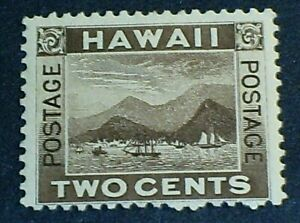 U.S. Possession Hawaii Stamp Scott 75 - 2 cent issue of 1894 MH OG F-VF