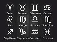 Set 12x autocollant sticker signe zodiaque astrologie voiture horoscope blanc