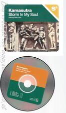 CD--KAMASUTRA -  - - SINGLE -- STORM IN MY SOUL