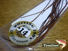 #14 BROWN WHITING 100's PACK DRY FLY SADDLE HACKLE FEATHERS WHITING FARMS NEW