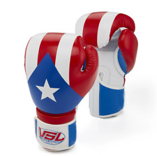 Showroom Sample Puerto Rico Pride Valle 2000 Youth Boxing Gloves