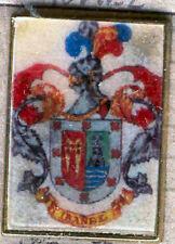 Heraldry PIN metallic del last name : IBANEZ