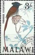 Timbre Oiseaux Malawi 101 o (30149)