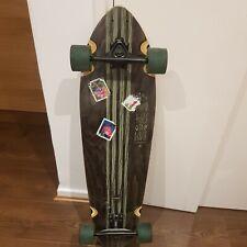 Longboard skateboard cruiser