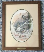 Patrick Costello 1980 Signed Framed Chickadee Print Bird Art Excellent Condition