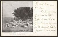 "South Africa & Namibia. Namaqualand ""Game Shooting"" 1915 Posted Printed Postcard"