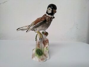 Oiseau Bird Porcelaine Meissen
