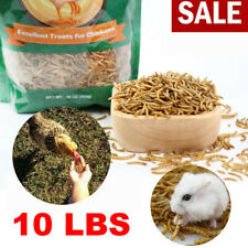 10Lbs Freeze Dried Mealworms for chickens Chicken Treats Duck Feed Organic Worms