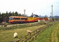 PHOTO  IRISH RAILWAY - CIE LOCO NO  039 POYNTZPASS 27.04.1991