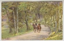 Sussex (East) postcard - Paradise Drive, Eastbourne - ARQ No. 905