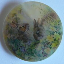 Cute Little Bunny Rabbits Grazing on MOP Mother of Pearl Shank Button