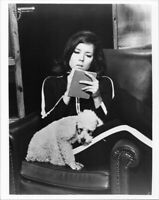 The Avengers TV series 1980's 8x10 photo Diana Rigg sitting with poodle