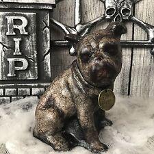 Spooky Doll Dog Bulldog Creepy Doll Haunted Horror Gothic Scary Dead Bloody