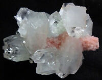 APOPHYLLITE CRYSTALS FORMATION W/ PINK CORAL FOSSIL MINERALS #27.3#