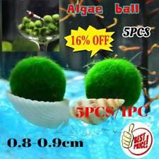 5/1PCS Nano Marimo Moss Ball-algae Live Aquarium Plant Fish Tank Supply Sale