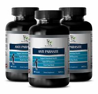 Wormwood Extract - ANTI-PARASITE Complex -  A very potent anti-parasitic - 3B
