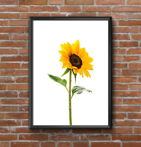 YELLOW SUNFLOWER FLORAL A4 MODERN PRINT PICTURE POSTER WALL ART