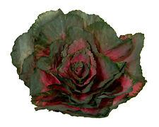 "Designer XLarge Artificial Faux Fake Mauve Kale with 12"" Stem Vegetable"