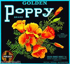 Azusa Los Angeles Golden Poppy Flowers Orange Citrus Fruit Crate Label Art Print