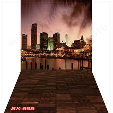 Cityscape10'x20'Computer/Digital Vinyl Scenic Photo Backdrop Background SX665B88