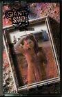 Giant Sand ( Howe Gelb ) - The Love Songs RARE OOP ORIG 1988 Homestead Cassette