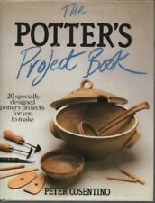 The Potter's Project Book By Peter Consentino