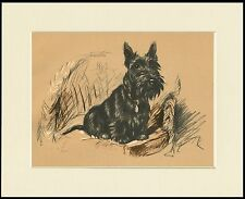 SCOTTISH TERRIER SAT ON CHAIR LOVELY DOG PRINT MOUNTED READY TO FRAME