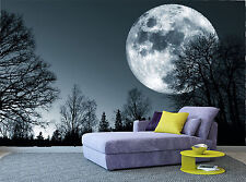 Moon Forest Night Trees Dark Wall Mural Photo Wallpaper GIANT WALL DECOR