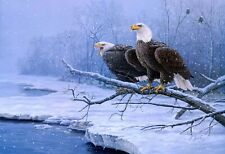 US SELLER- animal bird art eagle poster home and wall decor
