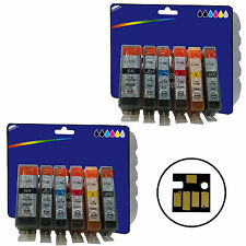 12 Inks for Canon MG6150 MG6250 MG8150 MG8170 MG8250 non-OEM 525/6 GY