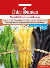 Dürr Buschbohnen Mischung Bohnen Samen  ca. 100 Korn  Hülsenfrüchte 4347