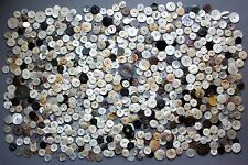 Huge Lot (1,210 G) of Vintage Mother of Pearl Buttons Large Size (1.7 - 3.6cm.)