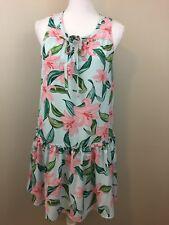 C&E Women's Floral Dress Small Sleeveless Dress Blue Pink Shift Peplum Lined NWT