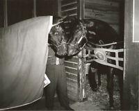 ROUND TABLE & WILLIAM MOLTER - ORIGINAL 1959 ARLINGTON PARK HORSE RACING PHOTO!