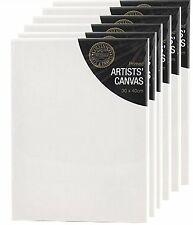 Blank White Primed Artists Canvas With Wooden Frame Set Of 12 30x40x1.7cm
