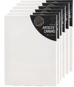 En Blanco Cebada Artistas Lienzo Con Marco de Madera Paquete 6 30 x 40cm x 1.7cm