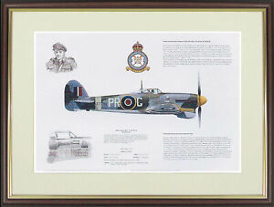 "Hawker Typhoon picture ""Hawker Typhoon Mk 1B"" by M.A.Kinnear - NGAP02"