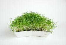 Sprout tray, microgreen kit, germinate kit