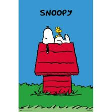 SNOOPY - DOGHOUSE POSTER 24x36 - PEANUTS WOODSTOCK 3535