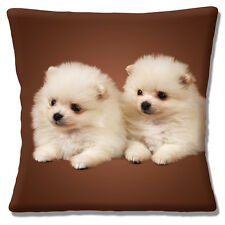 Two Cute Pomeranian Puppy Dogs Cushion Cover 16 inch 40cm Photo Print on Brown