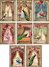 Peacock Windows ~ Card Making Toppers / Scrapbooking / Crafting