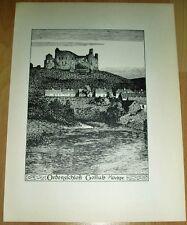 Gollub Golub-Dobrzyń Ordensschloss: alte Ansicht / Druck ca 1920