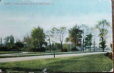 Cleveland, Drive in Wade Park. Souvenir Postcard Co. # 2768