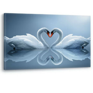 Swans in Love Heart Shaped Large Luxury Canvas Wall Art Picture Print A0 A2 A4