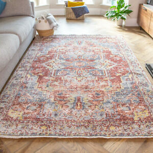 Terracotta Traditional Rug Distressed Living Room Rugs Transitional Lounge Rug