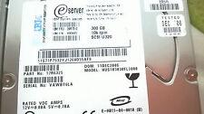 IBM 300GB 10K SCSI U320 FRU 39R7312 26K5823 40k1025 17R6325 HUS103030FL3800
