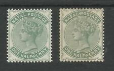 NATAL SG97&97a THE 2 SHADES QV HALFPENNY (BLUE GREEN&DULL GRN) MINT CAT £106.50